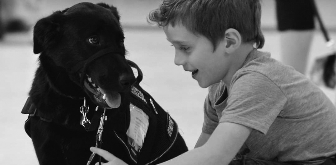 Image of a service dog and young boy